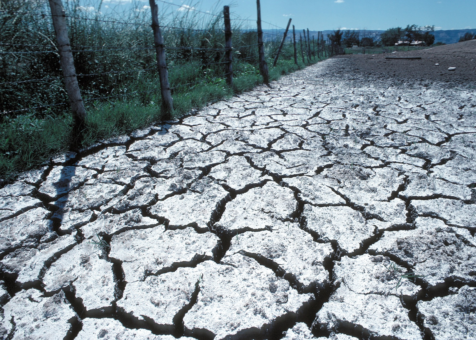 soil salination There are various practices that you can apply, in order to prevent soil salinity or manage salinity problems once they already occur.